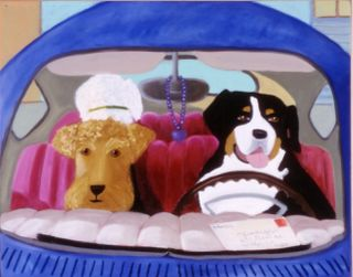3 dogs waiting in a car